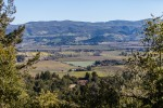 A gorgeous view overlooking the Napa Valley from a hillside vantage point